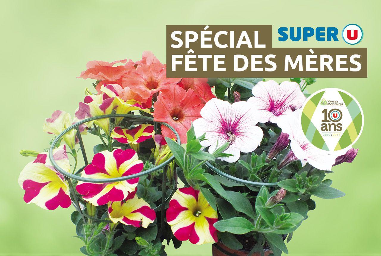 Special Fête des Mères - Pays de Montaigu